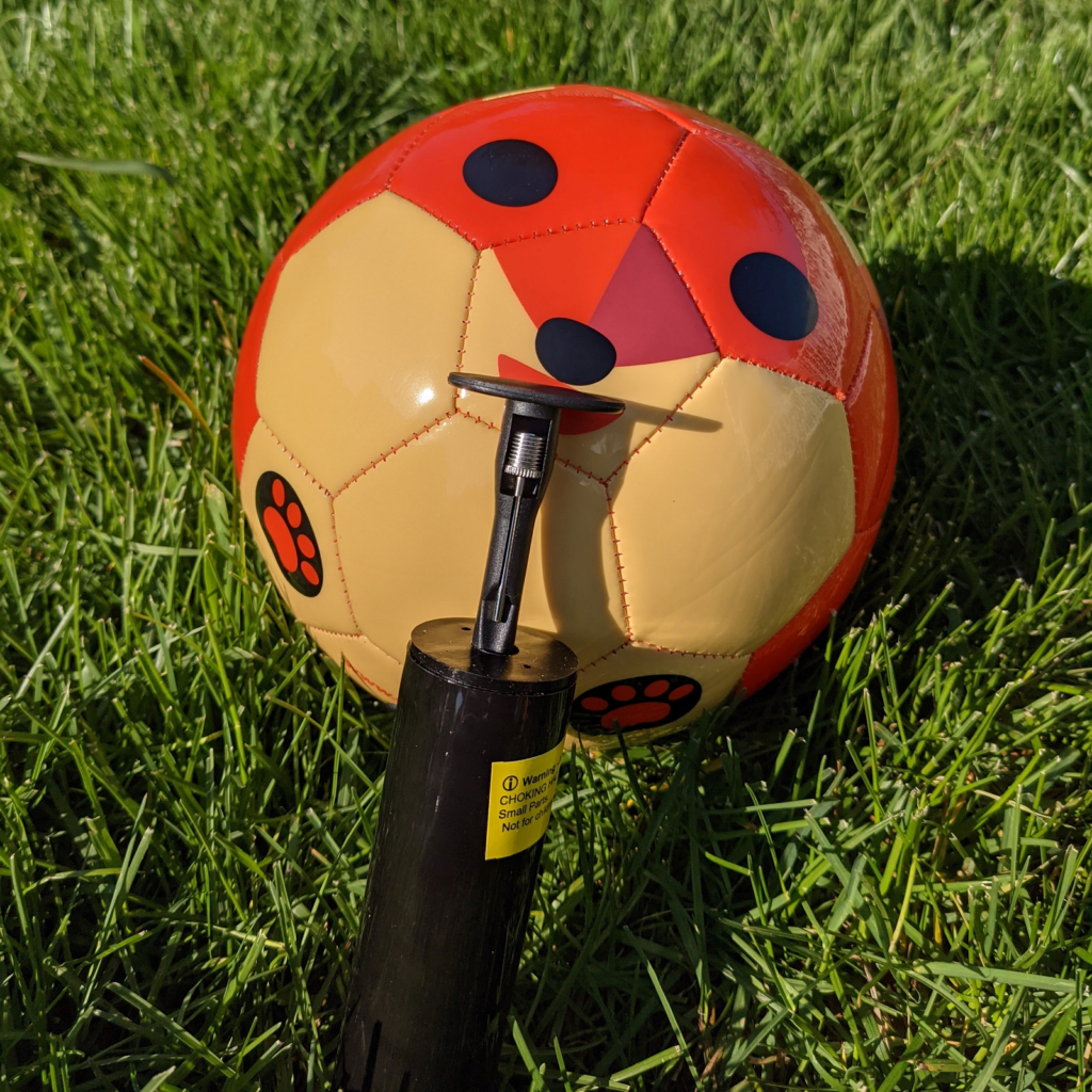 Daball The Fox Size 3 Soccer Ball and pump